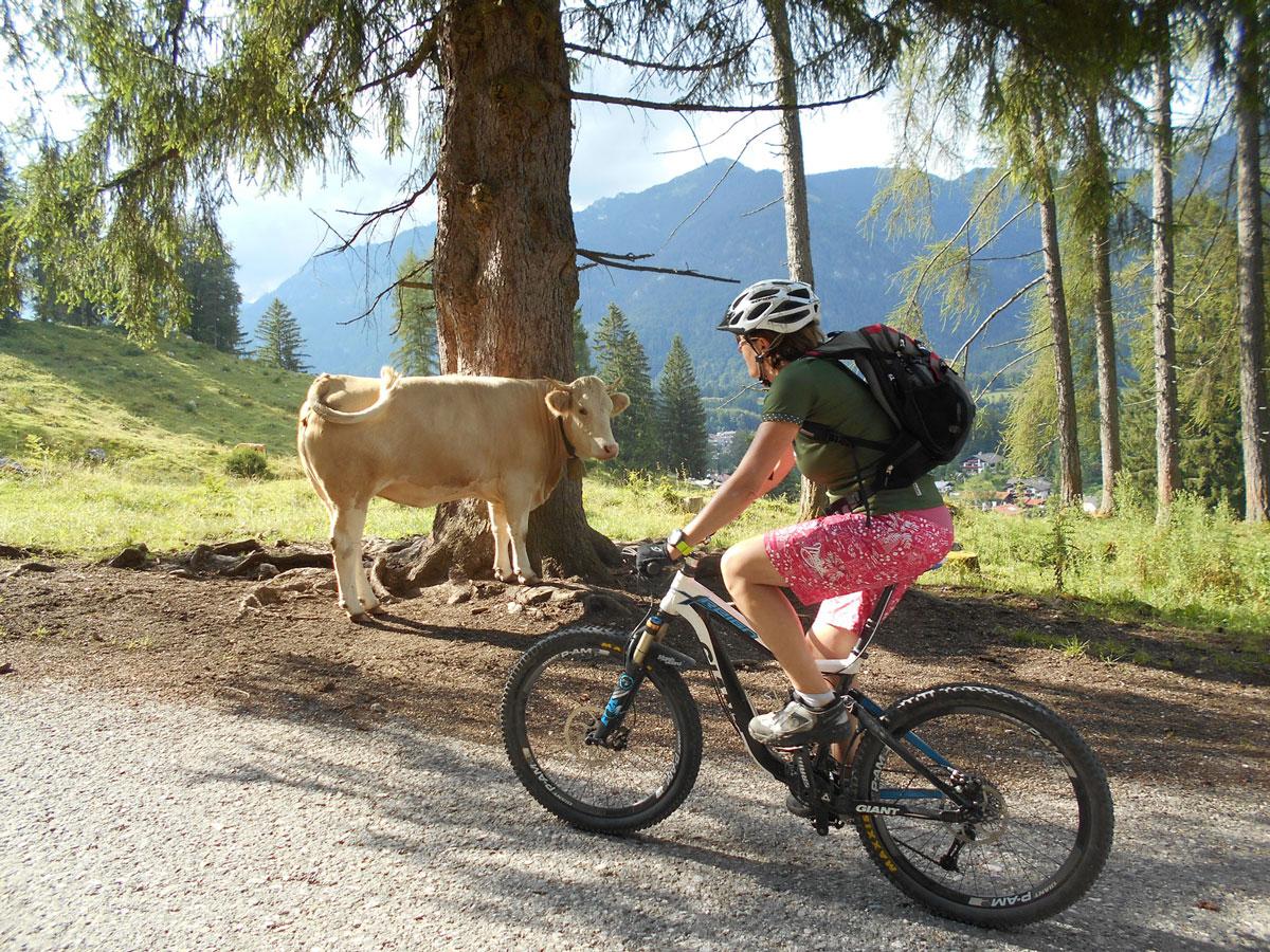 E-Bike Tour zum Bergsee